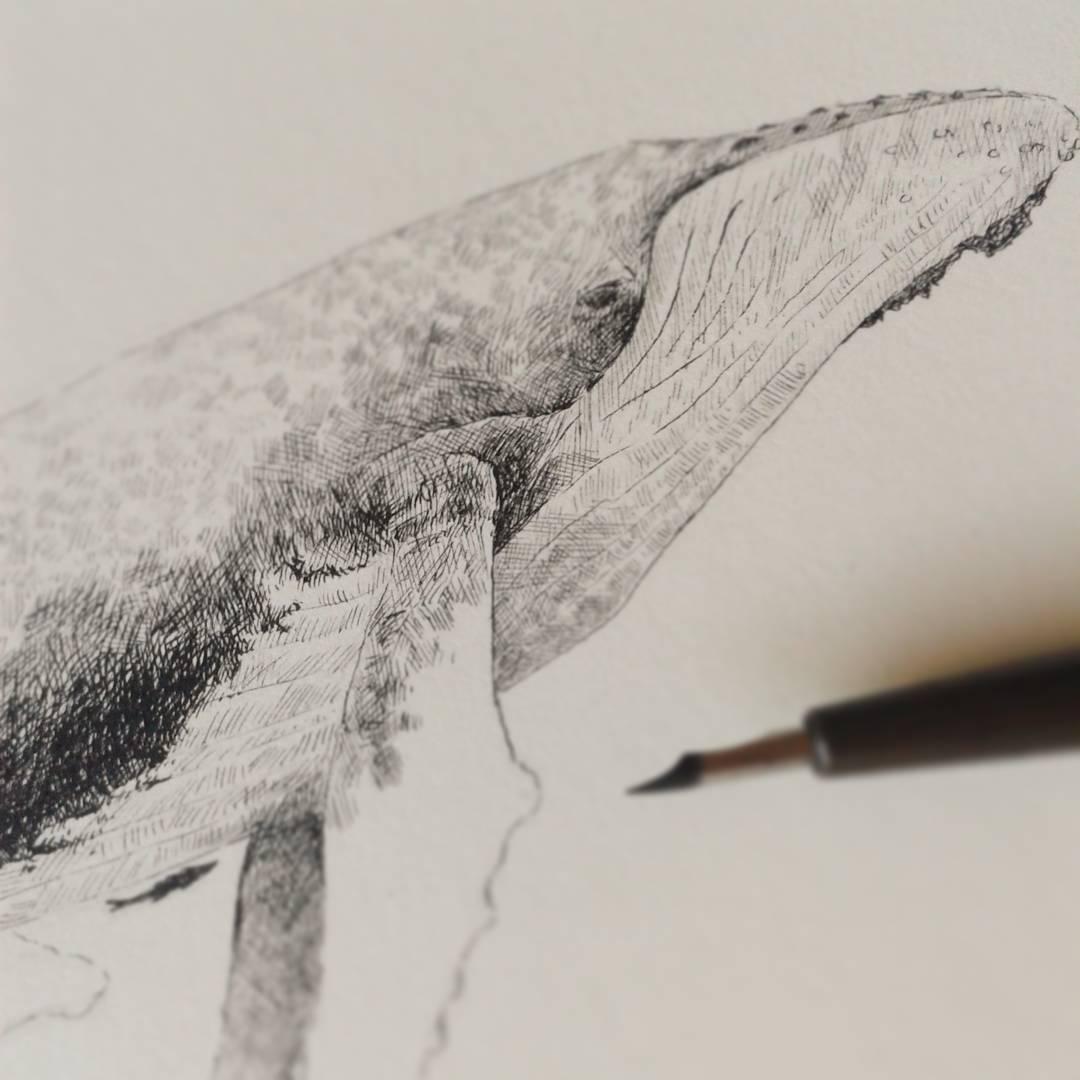 Artist-Natasha-van-Netten-whale-June-26-2017