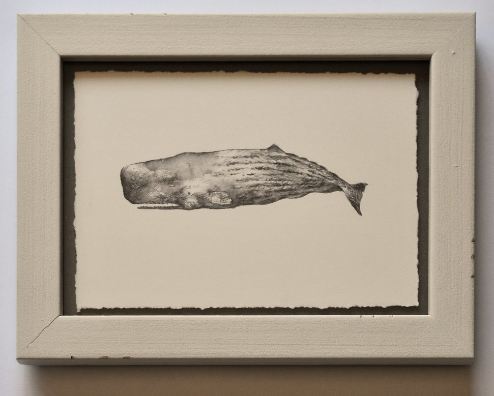 Artist-Natasha-van-Netten-whale-prestige-picture-framing-etcetera-victoria-bc-June-13-2017