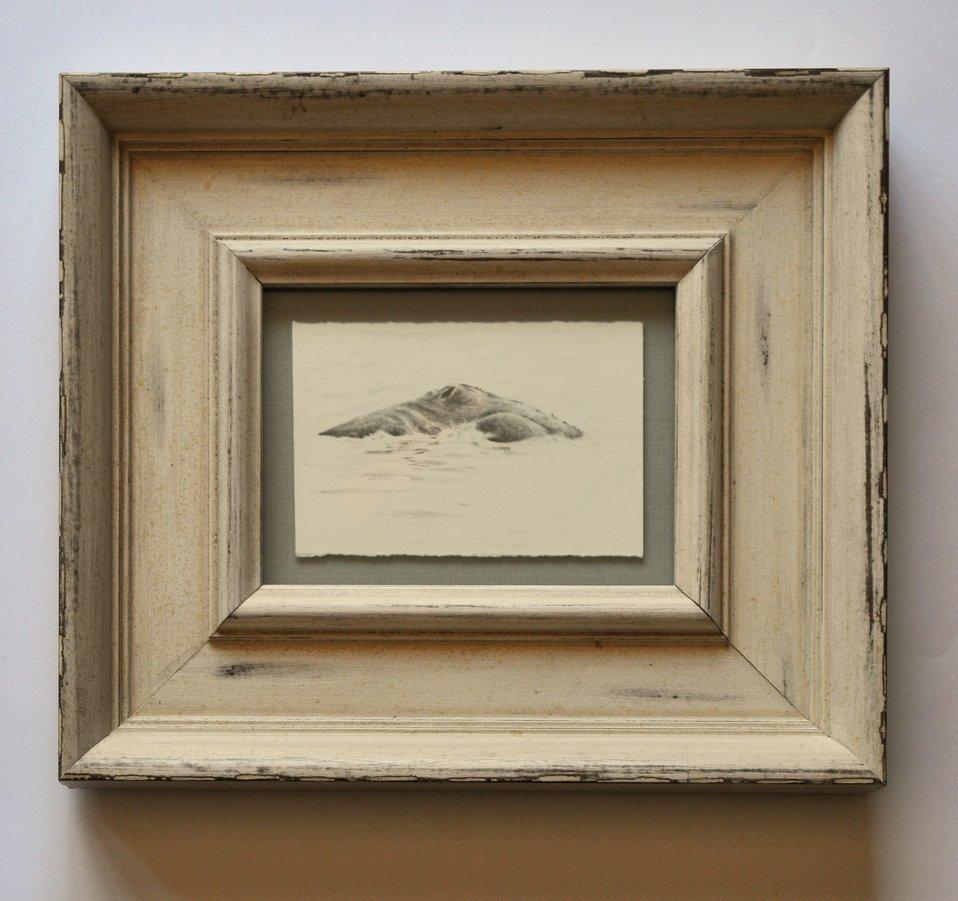 Artist-Natasha-van-Netten-whale-prestige-picture-framing-etcetera-victoria-bc-June-27-2017