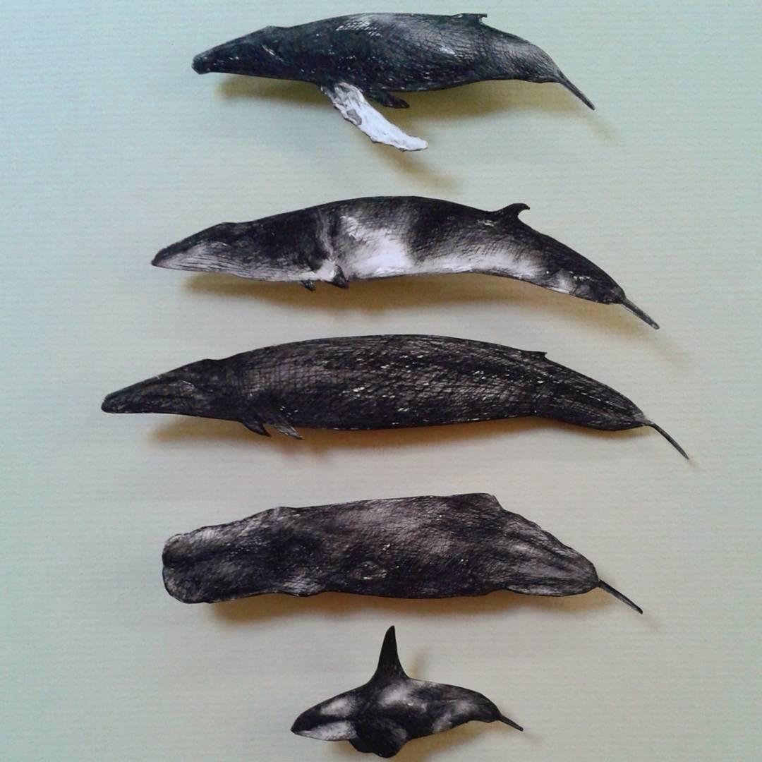 Artist-Natasha-van-Netten-whales-June-11-2017