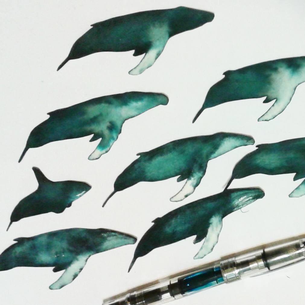 Artist-n_van_netten-whales-Instagram-June-15-2017